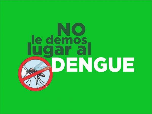 banner dengue web
